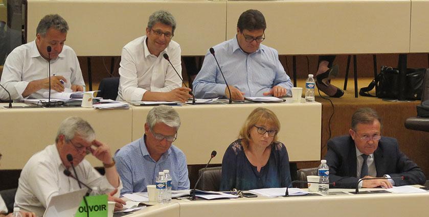 Groupe UDI - Fédération-UDI-Métropole-de-Lyon
