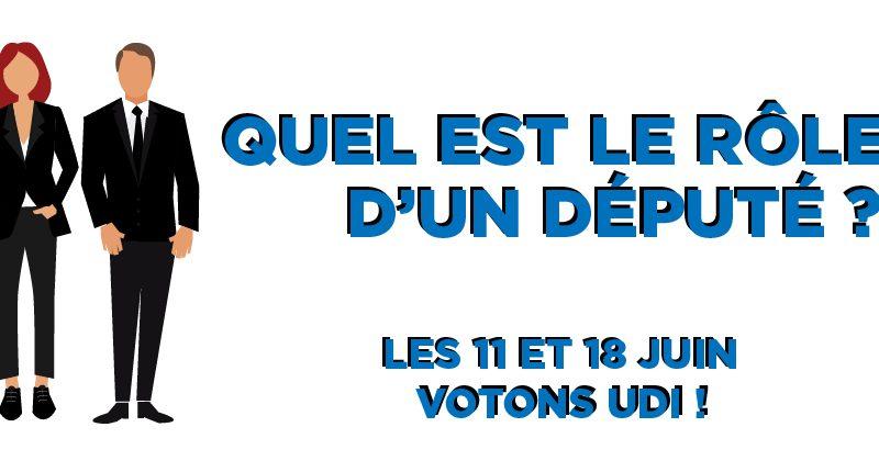 Infographie-image-à-la-une-Réseaux-sociaux---Rôle-d'un-député-Christophe-Geourjon-Denis-Broliquier---Maurice-Iacovela-Fédération-UDI-Métropole-de-Lyon-Législatives-2017