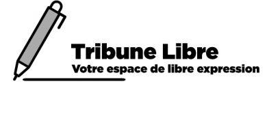 [Tribune Libre] Débat d'orientations budgétaires et les politiques Contra-cycliques par Vincent Lièvre
